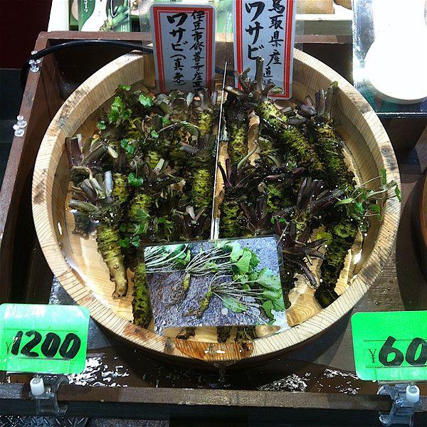 wasabi site de rencontre